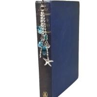 Book01.1532842862_c01v